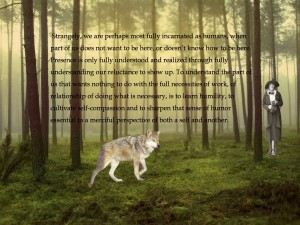 WolfPP2